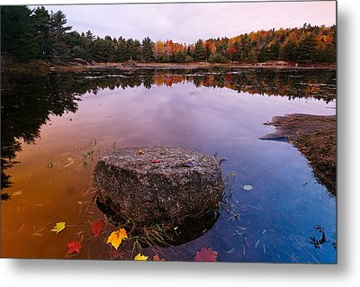 Rock In A Pond Acadia Natioanl Park Maine Metal Print by George Oze