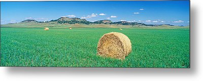 Rolled Hay Bale In Field With Hills Metal Print by Panoramic Images