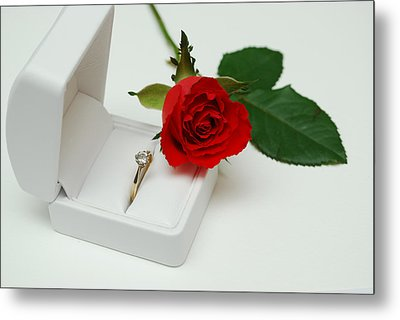 Rose And Diamond Ring Metal Print by Terence Davis