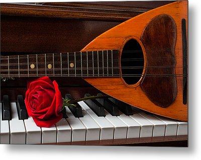 Rose And Mandolin Metal Print by Garry Gay