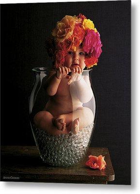 Roses Metal Print by Anne Geddes