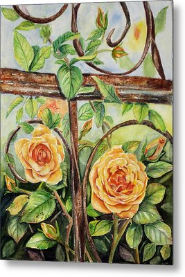 Roses At Garden Fence Metal Print by Patricia Pushaw