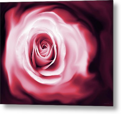 Rose's Whispers Magenta  Metal Print by Jennie Marie Schell