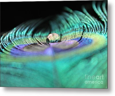 Royalty Within Metal Print by Krissy Katsimbras