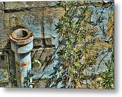 Rusted Pipe With Leaves Metal Print by Mike McCool