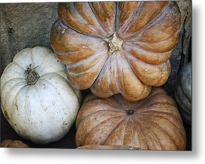 Rustic Pumpkins Metal Print by Joan Carroll