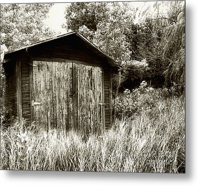 Rustic Shed Metal Print by Perry Webster