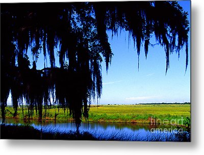 Sabine National Wildlife Refuge Metal Print by Thomas R Fletcher
