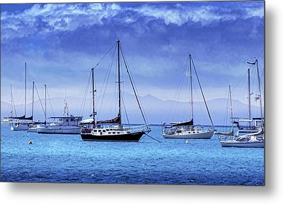 Safe Harbor Metal Print by Holly Kempe