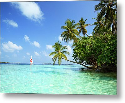 Sail Boat, Indian Ocean Metal Print by Matteo Colombo