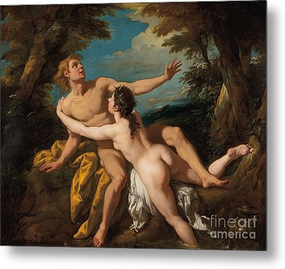 Salmacis And Hermaphroditus Metal Print by Jean Francois de Troy