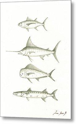 Saltwater Gamefishes Metal Print by Juan Bosco