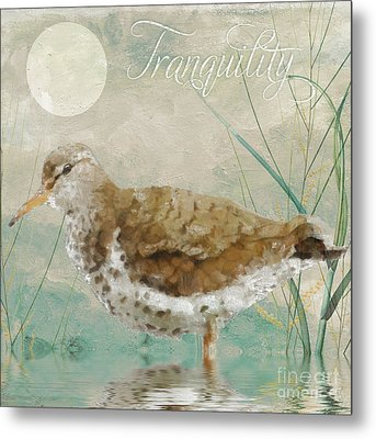 Sandpiper II Metal Print by Mindy Sommers