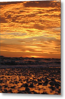 Sanibel Island Metal Print by Nick Flavin