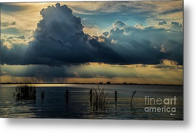 Scattered Showers Metal Print by Sherry Owens