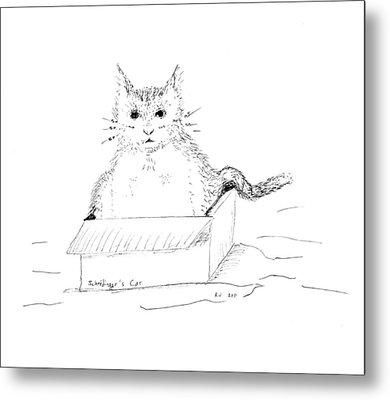 Schrodinger Cat Metal Print by Regina Valluzzi