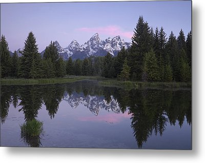 Schwabacher Metal Print by Andrew Soundarajan