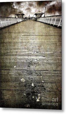 Seagull Bombing Run Metal Print by Meirion Matthias