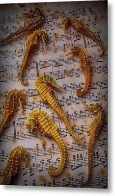 Seahorses On Sheet Music Metal Print by Garry Gay