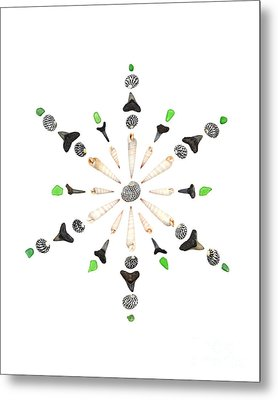 Seashell Snowflake 6 Metal Print by Jennifer Booher