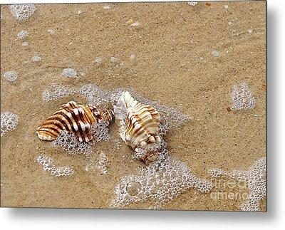 Seashells And Bubbles 2 Metal Print by Kaye Menner