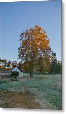 Seasons Change In Valley Forge - Autumn Metal Print by Bill Cannon