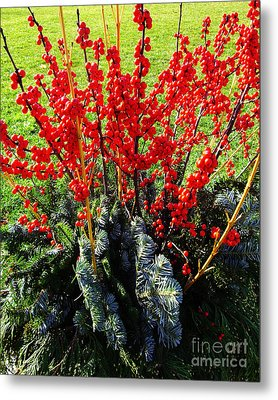 Seasons Greetings Metal Print by Xueling Zou