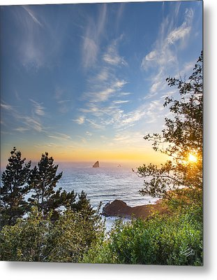 Serene Coast Metal Print by Leland D Howard