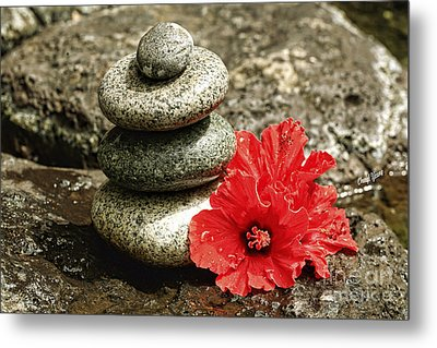 Serenity Metal Print by Cheryl Young