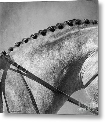 Shades Of Grey Fine Art Horse Photography Metal Print by Michelle Wrighton