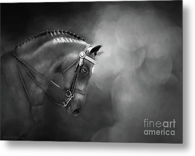 Shadows And Light Metal Print by Michelle Wrighton