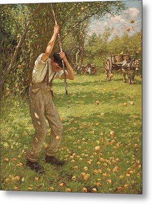 Shaking Down Cider Apples  Metal Print by Henry Herbert La Thangue