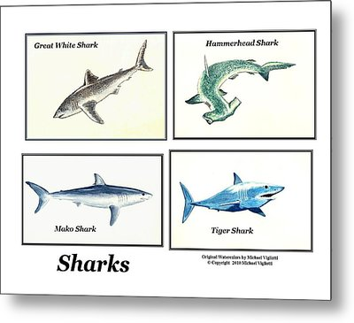 Sharks Collage Metal Print by Michael Vigliotti