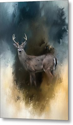 Shiloh Buck Metal Print by Jai Johnson