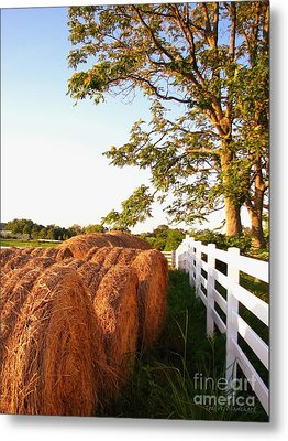 Side-by-side Metal Print by Todd A Blanchard