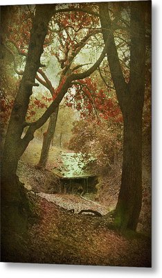Sighs Of Love Metal Print by Laurie Search