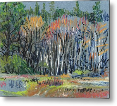 Signs Of Spring Metal Print by Donald Maier