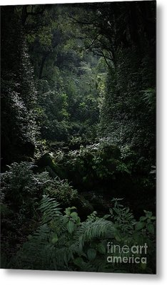 Silence Is Round Me   - Mokulehua Metal Print by Sharon Mau