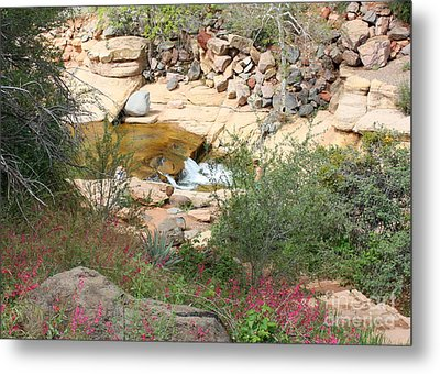 Slide Rock With Pink Wildflowers Metal Print by Carol Groenen