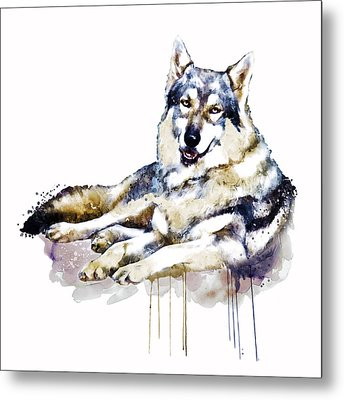 Smiling Wolf Metal Print by Marian Voicu