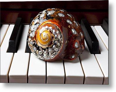 Snail Shell On Keys Metal Print by Garry Gay