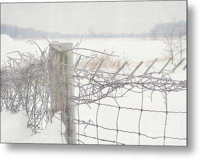 Snow Fence Metal Print by Sandra Cunningham