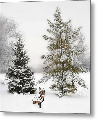 Snow In The Park Metal Print by Liviu Leahu