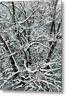 Snow Tree Metal Print by Nadi Spencer