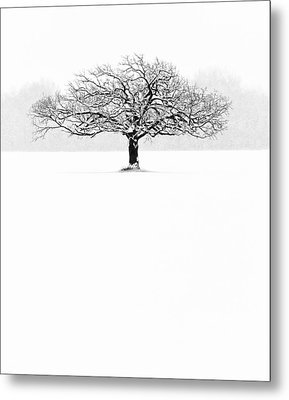 So Alone, A Perfect Reflection Of My Empty Soul Metal Print by Matt Anderson