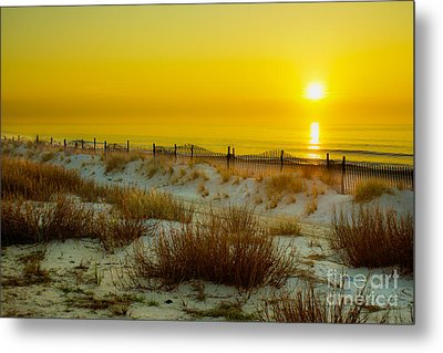 Soft And Dreamy Metal Print by Matthew Trudeau