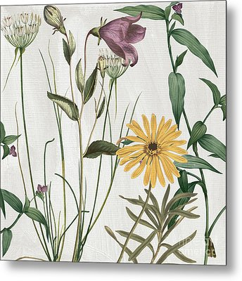 Softly Crocus And Daisy Metal Print by Mindy Sommers