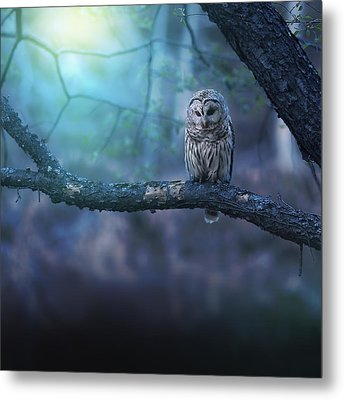 Solitude - Square Metal Print by Rob Blair