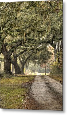 Southern Drive Live Oaks And Spanish Moss Metal Print by Dustin K Ryan