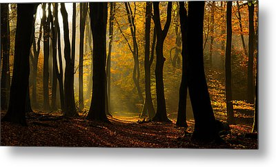 Speulder Panorama Metal Print by Martin Podt